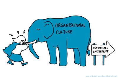 Culture elephant