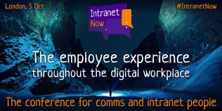 The employee experience throughout the digital workplace.